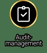 Audit-Management Software